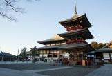 Ngôi chùa nghìn năm tuổi ở Nhật nổi tiếng với việc xin xăm