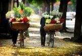 Ngắm thu Hà Nội trong trẻo, bình yên qua những hàng hoa rong rực rỡ sắc màu trên phố