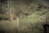 Người đàn ông lõa thể, chết trong tư thế treo cổ trong vườn keo lá tràm