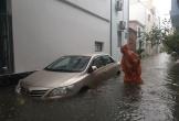 Đà Nẵng hoãn họp HĐND vì mưa ngập
