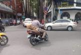 Bức ảnh đàn chó đu bám trên yên xe cùng chủ qua mọi nẻo đường gây sốt mạng xã hội