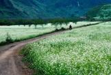 Nơi mơ đến, chốn mong về trong tháng 12 ở Việt Nam