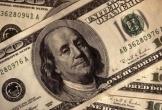 Hai tiệm vàng bị phạt 80 triệu đồng vì bán 100 USD