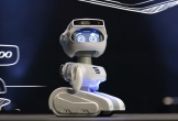 Robot Misty II