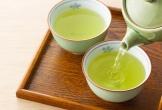 Uống trà xanh hàng ngày có thể giảm nguy cơ mất trí nhớ