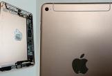 iPad mini 5 lộ ảnh với thiết kế mới