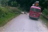 Clip: Lao trúng vào hông xe khách, bé trai thoát chết khó tin