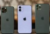 iPhone 11 Pro không được ưa chuộng tại Việt Nam