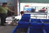 Đà Nẵng phạt 20 triệu đồng một nhà hàng nuôi nhốt động vật trái phép