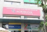 Truy tố cựu giám đốc Phòng giao dịch Chương Dương - Agribank