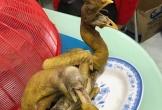 Khiếp đảm màn luộc gà tay nghề kém, gà sau khi luộc nhìn như... 'khủng long sống lại'