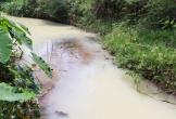 Nước thải có màu vàng đục tuôn ra kênh dài hơn 1km, khiến người dân kinh hãi