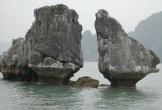 'Chưa thăm Vịnh Hạ Long, chưa phải đến Việt Nam'