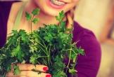 Các loại rau thơm có tác dụng ức chế lão hóa
