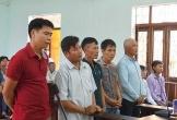 Lý giải của Tòa Cấp cao Đà Nẵng về vụ cưa gỗ khô