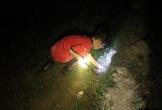 'Đội quân' lội bùn bắt cua đồng giữa đêm