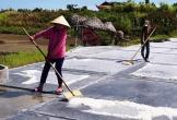 Chang nắng trên đồng muối Châu Hạ