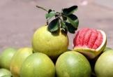 Top 3 loại trái cây giúp giảm cân vèo vèo lại lợi đường tiêu hóa khiến chị em mê mẩn