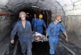 Tai nạn lao động, một công nhân ngành than tử vong thương tâm