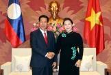 Chủ tịch Quốc hội Nguyễn Thị Kim Ngân tiếp khách quốc tế