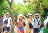 Đà Nẵng cần mạnh tay trị hoạt động du lịch 'chui'