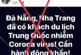 Sự thật hoang tin du khách nhiễm virus corona vào Đà Nẵng