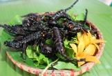 Khai mạc Ngày hội ẩm thực các món