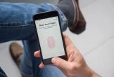 Hé lộ tin đồn đầu tiên về Iphone 13