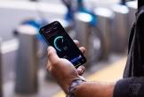 Người dùng lo ngại về dung lượng pin trên iPhone 12