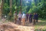 Đã tìm thấy thi thể 2 người đàn ông bị lũ cuốn khi đi rừng
