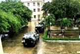 Đà Nẵng huy động 3 xe lội nước đặc chủng ứng cứu người dân trong bão số 9