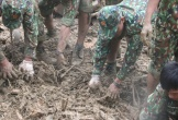 Quảng Nam cấp đất, cho xây thêm thủy điện ở