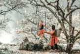 Mộc Châu vào mùa hoa mơ, nở trắng trời khiến team mê xê dịch 'ngứa nghề'