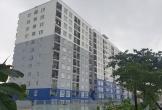 Cấp sai đối tượng nhà ở xã hội tại Đà Nẵng, ai chịu trách nhiệm?