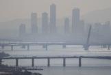 Quan chức Hàn Quốc phụ trách dịch COVID-19 nhảy sông Hàn tự tử