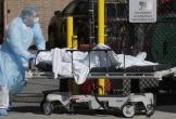 Chuyên gia cảnh báo Mỹ có thể là vùng dịch COVID-19 chết chóc nhất thế giới