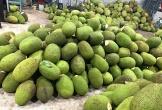 Bòn bon 2 ngàn/kg, mít Thái 4 ngàn/kg, trái cây chưa bao giờ rẻ thế