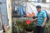 Hoà Vang - Đà Nẵng: Thiếu nước sinh hoạt, dân khổ
