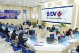 BIDV rao bán khoản nợ 240 tỷ đồng của Công ty Nam Sơn