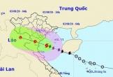 Bão số 2 cách bờ biển các tỉnh Thái Bình - Nghệ An khoảng 120km