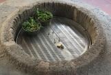 Giếng cổ nghìn năm và tình mẫu tử trong tục làm lễ xin sữa lưu truyền trong dân gian