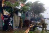 Quảng Bình chủ động ứng phó diễn biến của bão số 5