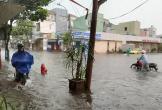 Mưa lớn, nhiều tuyến đường Đà Nẵng ngập sâu, cây xanh gãy đổ