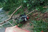 1 người chết, 1 người mất tích, hơn 100 người bị thương, hàng chục nghỉn nhà tốc mái do bão