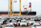 Tháng 8/2020, ô tô nhập khẩu tăng gần gấp đôi