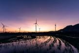 Trungnam Group: Chinh phục mục tiêu doanh nghiệp dẫn đầu ngành năng lượng
