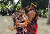 Đà Nẵng lần đầu có 'Chợ tình' trong dịp Tết Nguyên đán