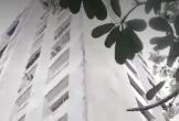 Nam sinh cấp 3 nghi rơi từ lầu cao chung cư Thái An 3&4 ở TP.HCM