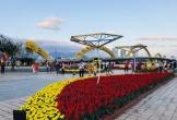 Đà Nẵng: Du khách tham quan, du lịch dịp Tết Nguyên đán ước đạt 30,8 ngàn lượt
