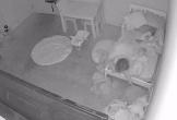 Bố chia sẻ clip trong phòng con gái lúc nửa đêm, dân mạng chia phe tranh cãi gay gắt